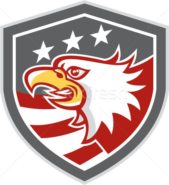 American Bald Eagle Head Flag Shield Retro Stock photo © patrimonio