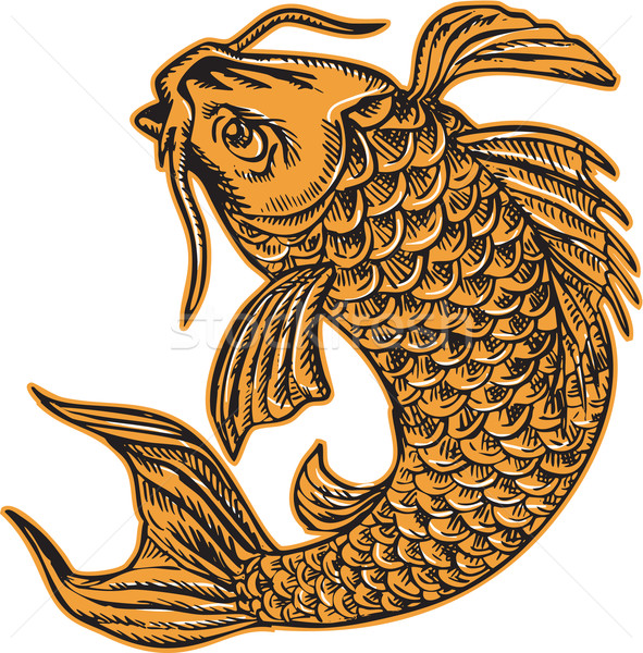 Koi Nishikigoi Carp Fish Jumping Etching Stock photo © patrimonio