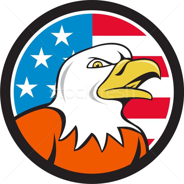 American Bald Eagle Head Angry Flag Circle Cartoon  Stock photo © patrimonio