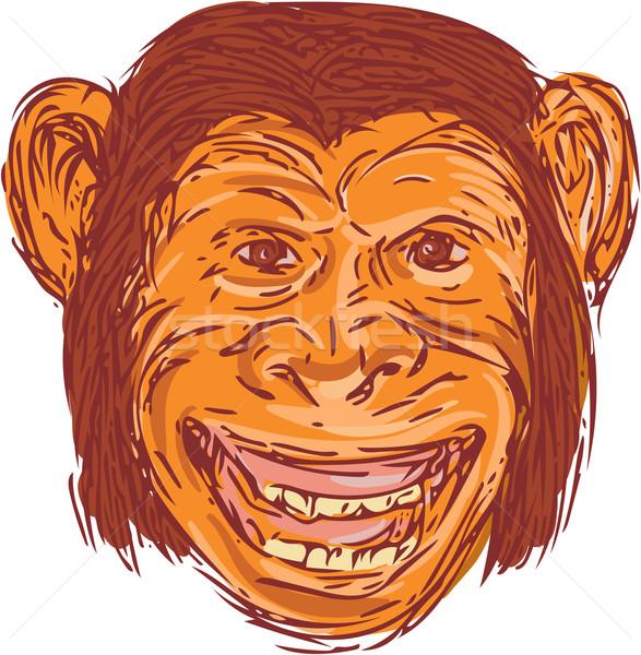 Chimpansee hoofd geïsoleerd tekening schets Stockfoto © patrimonio