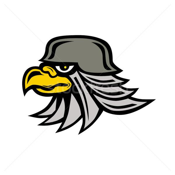 Iron Eagle Icon Stock photo © patrimonio