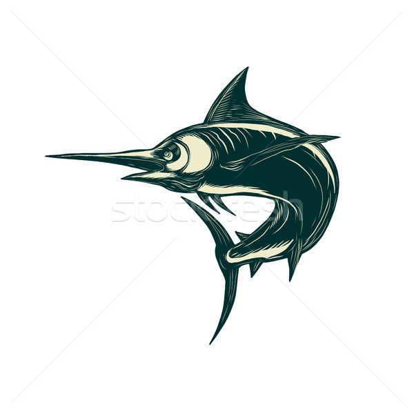 Blue Marlin Jump Scratchboard  Stock photo © patrimonio