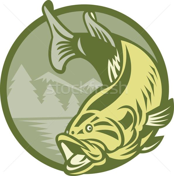 Basszus hal ugrik retro illusztráció tó Stock fotó © patrimonio