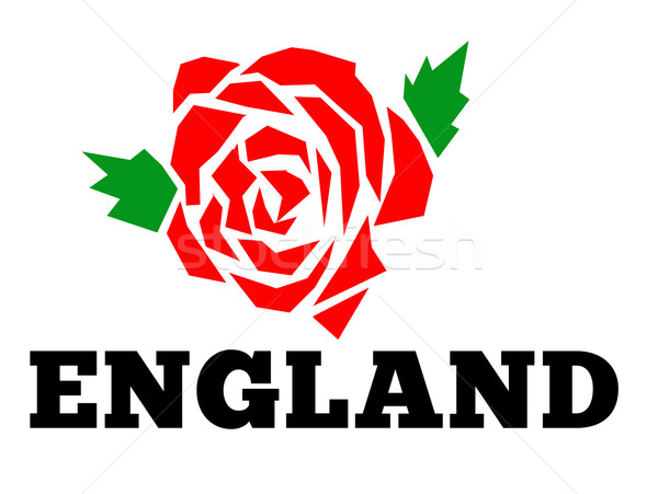 Rugby Angleterre anglais rose illustration rouge Photo stock © patrimonio