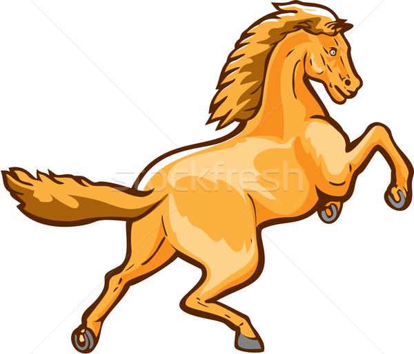 Colt Horse Prancing Rear Isolated Retro Stock photo © patrimonio
