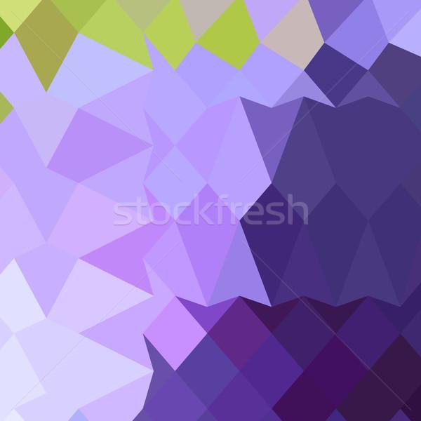 Druif paars abstract laag veelhoek stijl Stockfoto © patrimonio