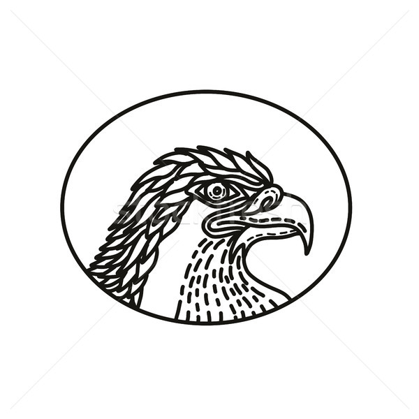 Eagle Head Side Mono Line Stock photo © patrimonio