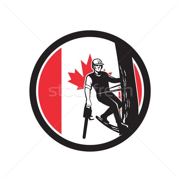 Ağaç cerrah Kanada bayrak ikon retro tarzı Stok fotoğraf © patrimonio