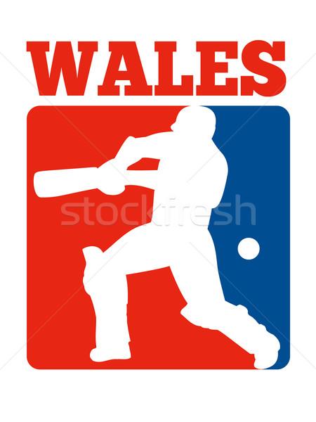 Kriket oyuncu Retro galler örnek bat Stok fotoğraf © patrimonio