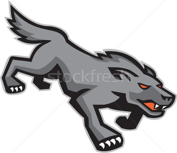Wild Dog Wolf Stalking Retro Stock photo © patrimonio