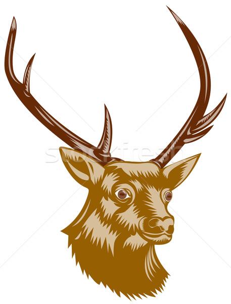 鹿 バック レトロな 実例 向い サイド ストックフォト © patrimonio