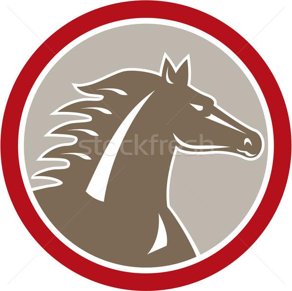 Horse Head Angry Circle Retro Stock photo © patrimonio