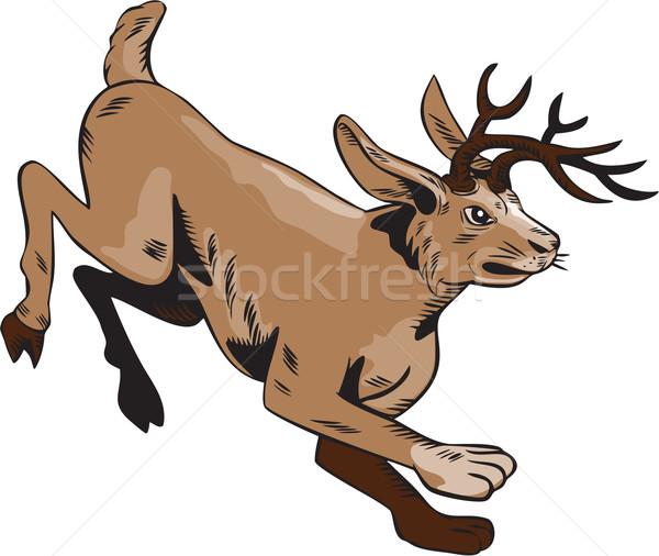 Saltando lado feito à mão estilo ilustração Foto stock © patrimonio