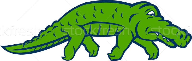Ansioso caimán retro ilustración lado establecer Foto stock © patrimonio