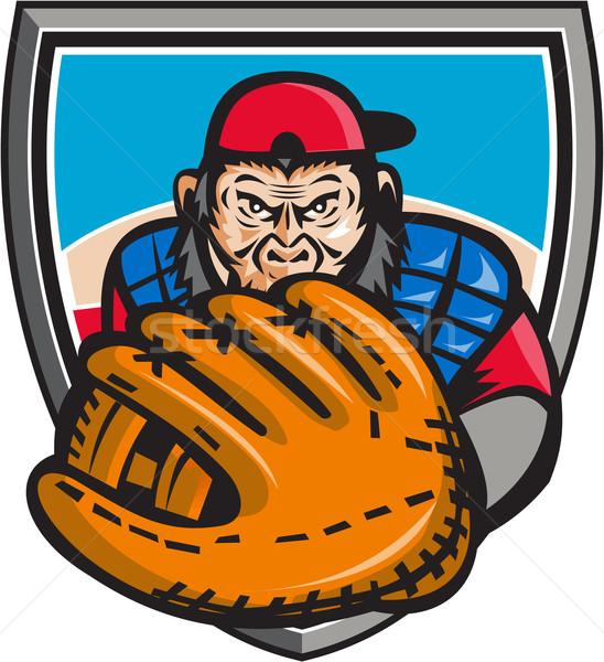 Csimpánz baseball kesztyű pajzs retro illusztráció Stock fotó © patrimonio