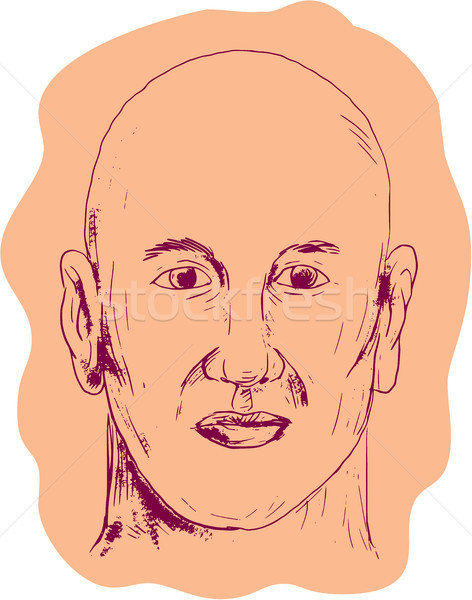 Bald Caucasian Male Head Drawing Stock photo © patrimonio