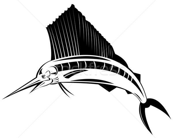 Balık atlama örnek Stok fotoğraf © patrimonio