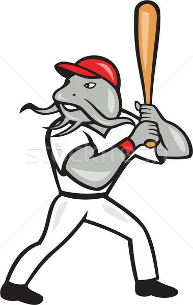 Catfish Baseball Hitter Batting Full Isolated Cartoon  Stock photo © patrimonio