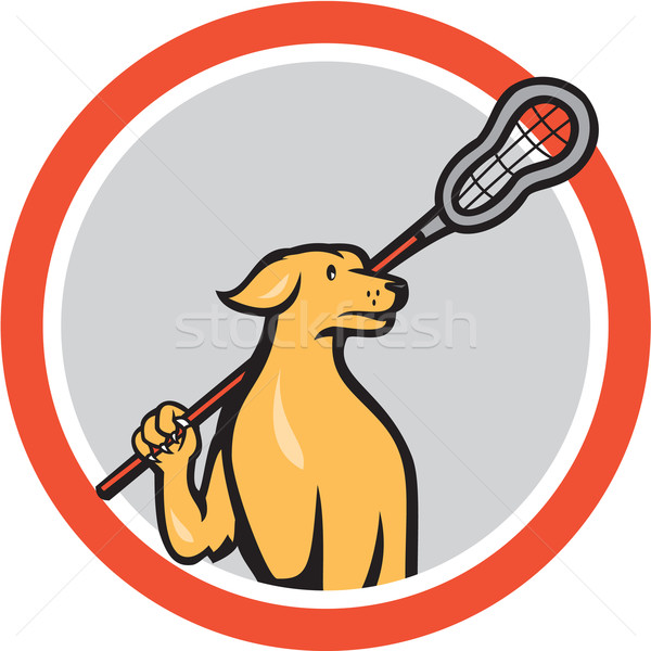 Dog Lacrosse Player Crosse Stick Cartoon Circle Stock photo © patrimonio
