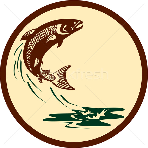 łososia ryb skoki wody retro ilustracja Zdjęcia stock © patrimonio
