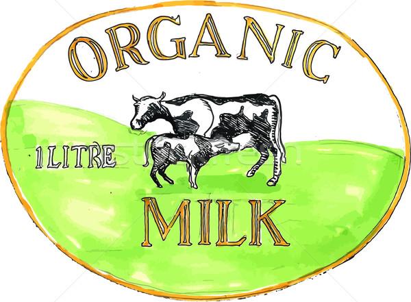 Cow Organic Milk Label Drawing Stock photo © patrimonio