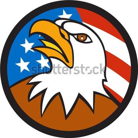 Calvo águila cabeza enojado círculo Foto stock © patrimonio