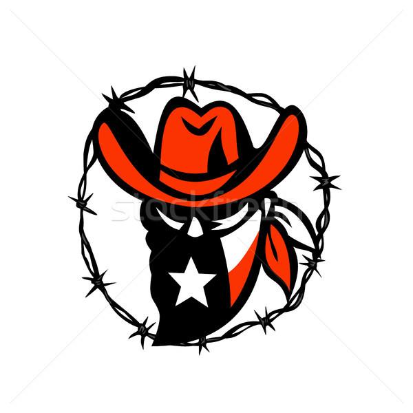 Teksas bayrak tel ikon stil örnek Stok fotoğraf © patrimonio