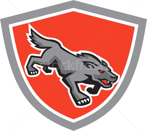 Angry Wolf Wild Dog Stalking Shield Retro Stock photo © patrimonio