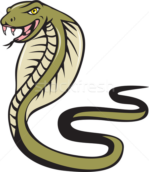 Cobra Viper Snake Attacking Cartoon Stock photo © patrimonio