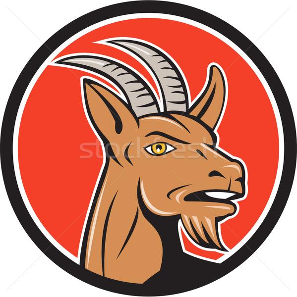 Mountain Goat Head Circle Cartoon Stock photo © patrimonio