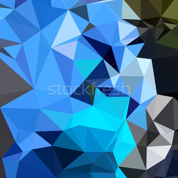 Air Force Blue Abstract Low Polygon Background Stock photo © patrimonio