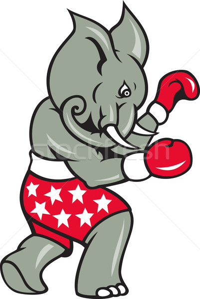 Elephant Boxer Boxing Stance  Stock photo © patrimonio