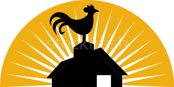Rooster crowing on top of farm house or barn Stock photo © patrimonio