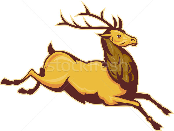 Stag deer or buck jumping Stock photo © patrimonio