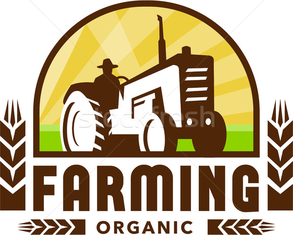 Traktor búza organikus gazdálkodás címer retro Stock fotó © patrimonio