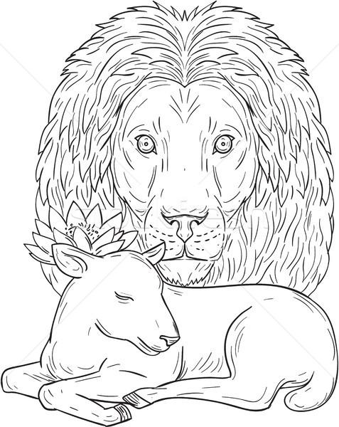 León viendo dormir cordero dibujo boceto Foto stock © patrimonio
