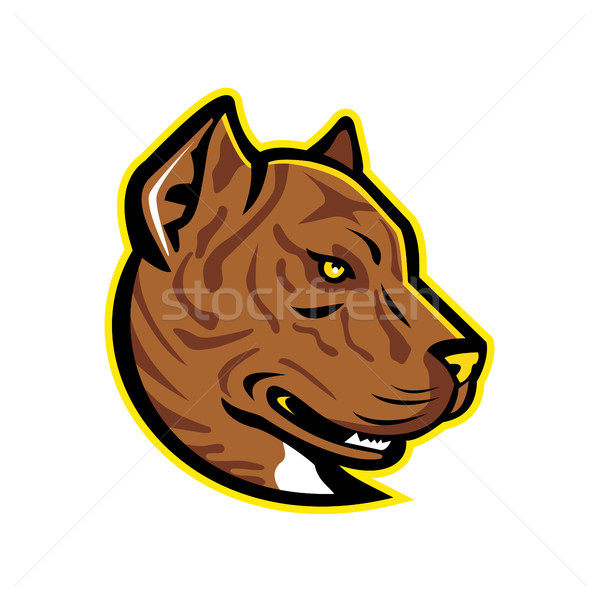 Spanish Bulldog or Spanish Alano Mascot Stock photo © patrimonio