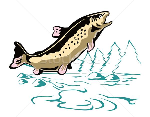форель рыбы иллюстрация сторона ретро-стиле ретро Сток-фото © patrimonio