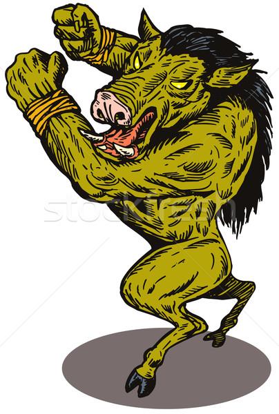 Wild Pig Boar Man Retro Stock photo © patrimonio