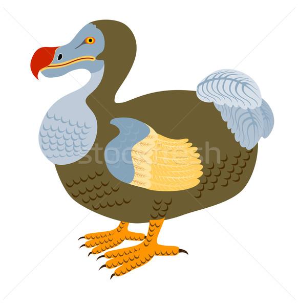 Dodo Bird Raphus Cucullatus Retro Stock photo © patrimonio
