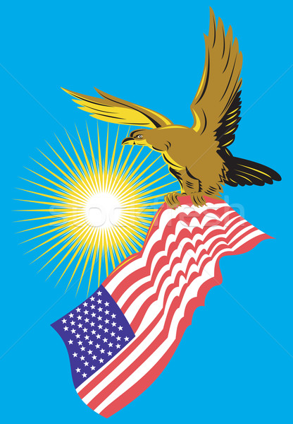 American Bald Eagle Carry Flag Retro Stock photo © patrimonio