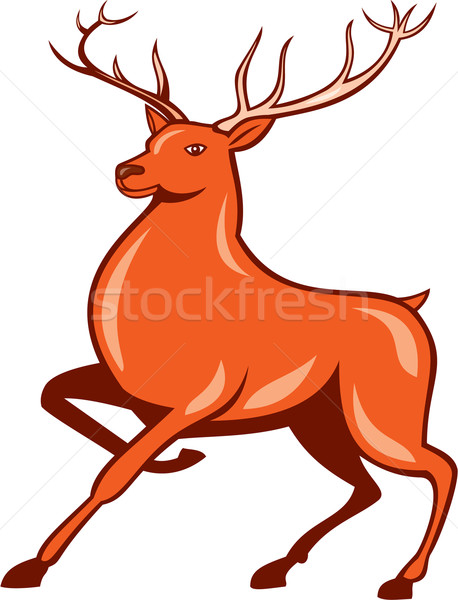 Red Stag Deer Side Marching Cartoon Stock photo © patrimonio