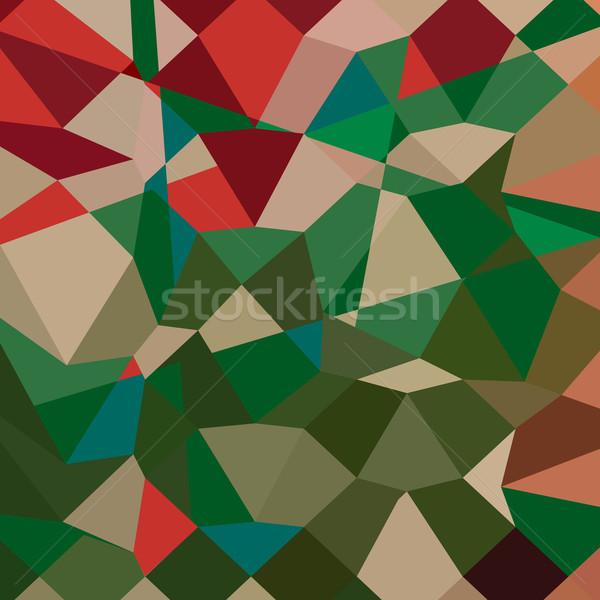 Amazon grünen abstrakten niedrig Polygon Stil Stock foto © patrimonio