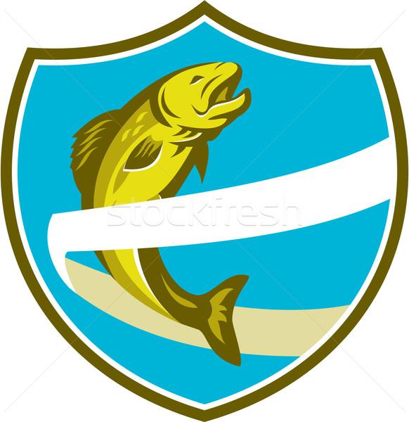 Trucha saltar cinta escudo retro ilustración Foto stock © patrimonio