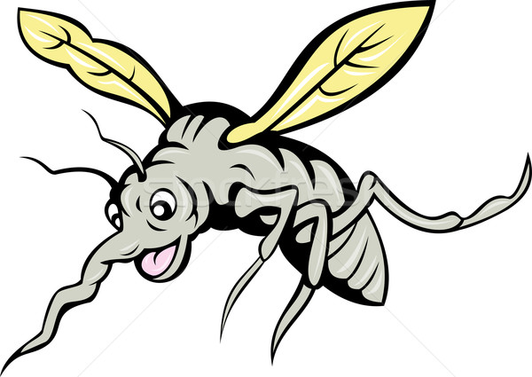 Cartoon zanzara battenti illustrazione isolato bianco Foto d'archivio © patrimonio