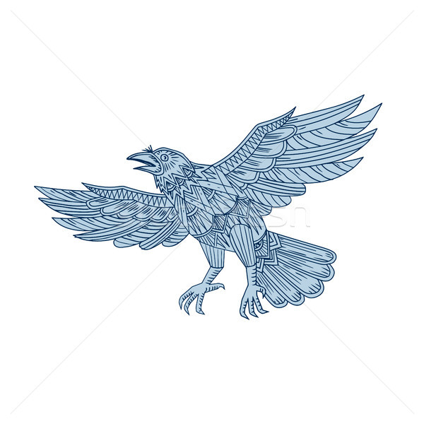Crow Flying Mandala Stock photo © patrimonio