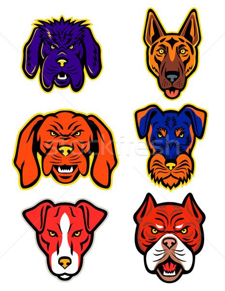 Working Dogs Mascot Collection Set Stock photo © patrimonio