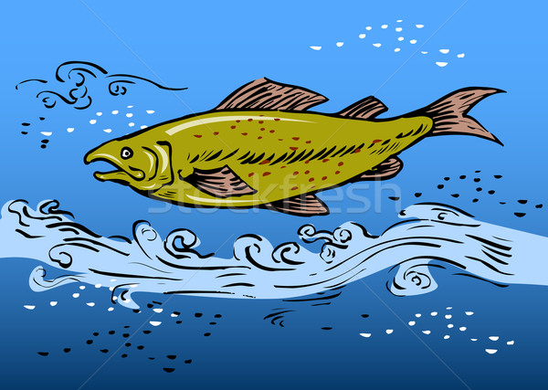 Trucha natación subacuático boceto estilo río Foto stock © patrimonio