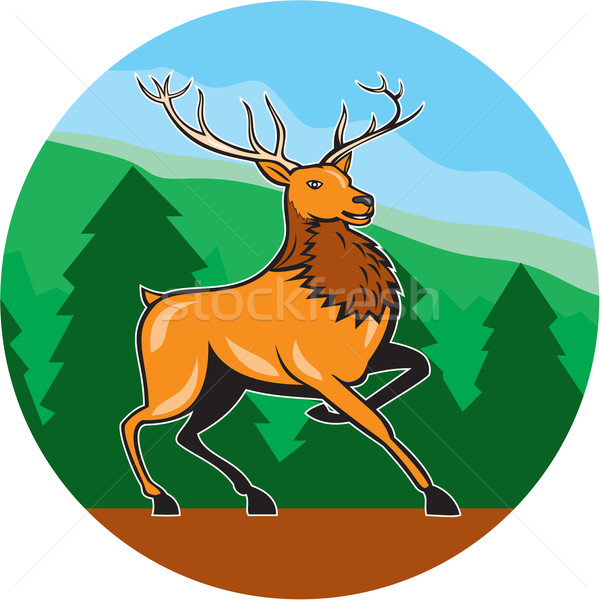 Red Stag Deer Side Marching Circle Cartoon Stock photo © patrimonio