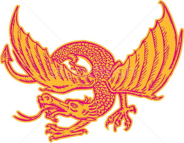 Dragon Medieval Front Etching Stock photo © patrimonio